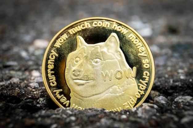 Dogecoin doge, crypto-monnaie, moyen de paiement dans le secteur financier