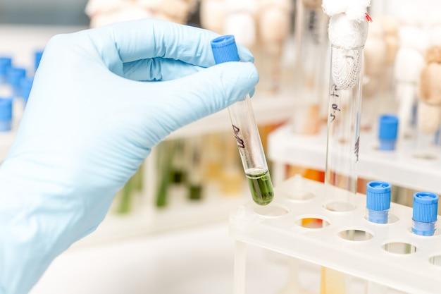 Doigts scientifiques tenant un tube à essai en verre dans un laboratoire de recherche