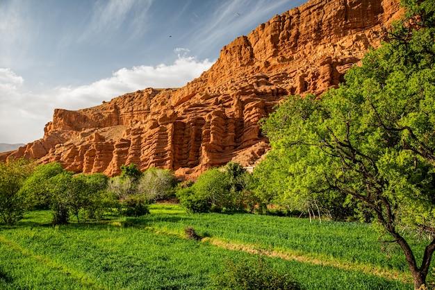 Doigts de singe dans la vallée du dadès, marrakech, maroc