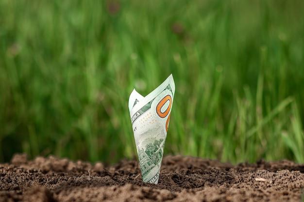 Les dollars américains poussent du sol comme des plantes sur fond de verdure