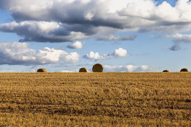 Domaine agricole
