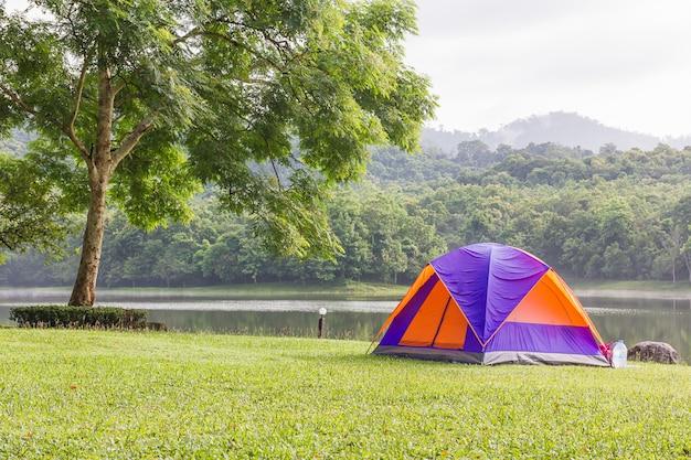 Dômes de camping en forêt