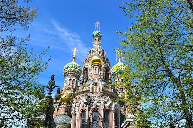 Dômes de l'église orthodoxe du sauveur sur le sang à saint-pétersbourg