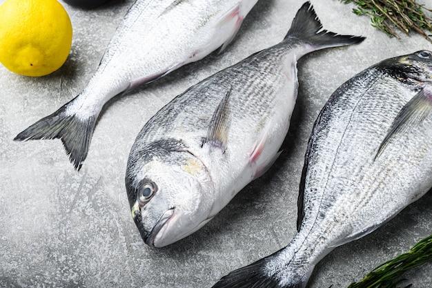Dorado cru ou poisson de la dorade aux herbes pour grill sur fond gris texturé vue latérale mise au point sélective.