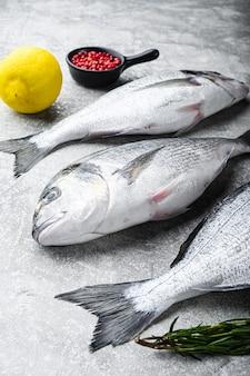 Dorado cru ou poisson de la dorade aux herbes pour griller sur vue de côté de table grise texturée.