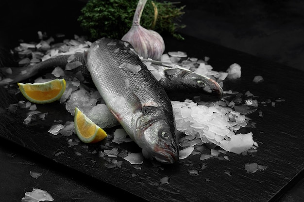 Dorado ou dorade biologique fraîche crue au citron sur des glaçons sur fond d'ardoise noire, de pierre ou de béton.