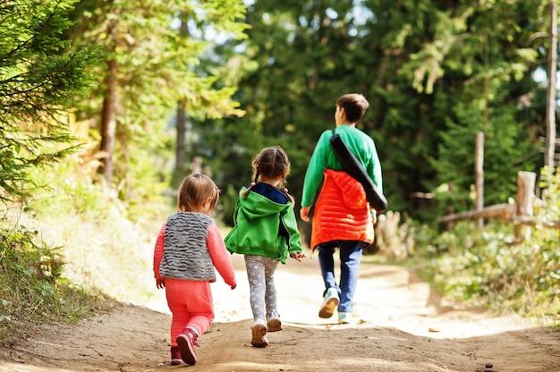 Dos de trois enfants marchant sur des montagnes boisées. voyages en famille et randonnées avec enfants.