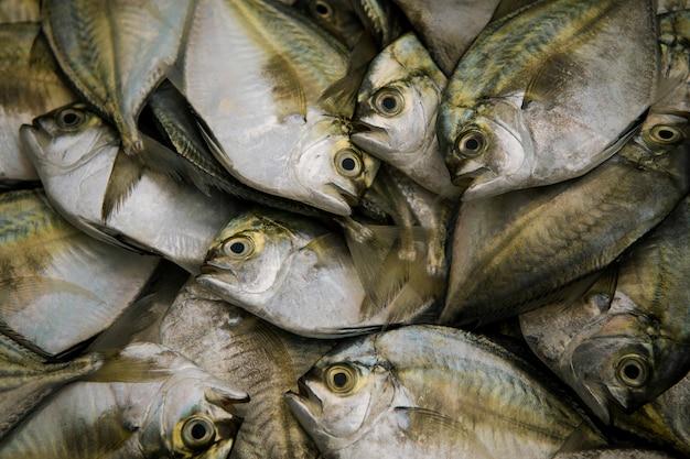 Douzaine de poissons de mer frais prêts à être cuisinés sur le marché du frais de thaïlande