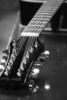 Douze cordes de guitare