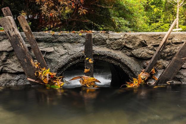 Le drainage sous la passerelle et le bois sec protègent les feuilles de la forêt tropicale humide.