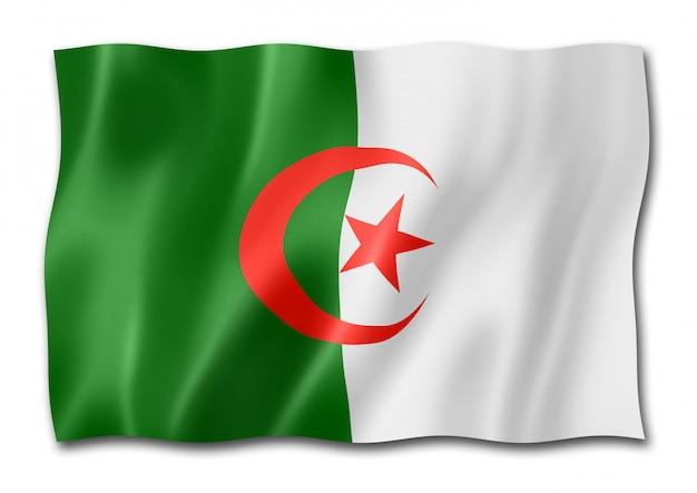 Drapeau algérien isolé