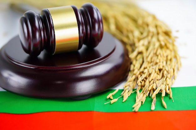 Drapeau de la bulgarie et marteau pour juge avocat avec du riz à grain d'or.