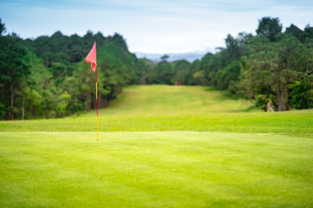Drapeau dans le trou sur le magnifique parcours de golf