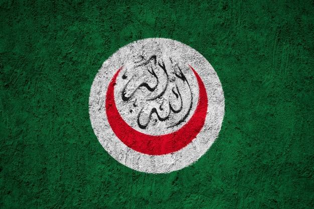 Drapeau national peint des drapeaux de l'oci sur un mur de béton