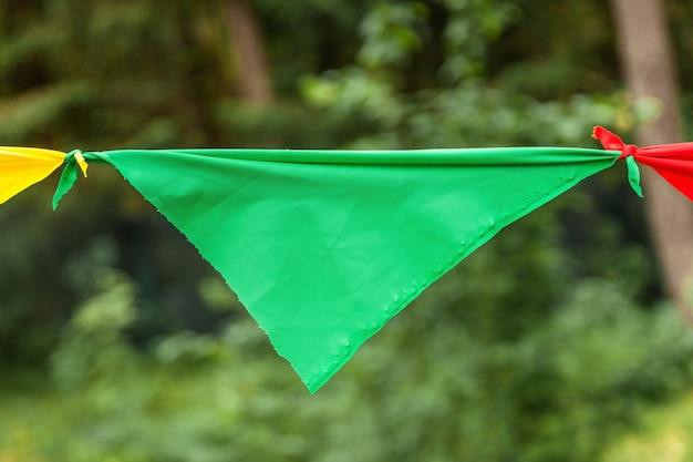 Drapeau vert d'une guirlande dans le parc