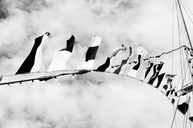 Drapeaux noir et blanc