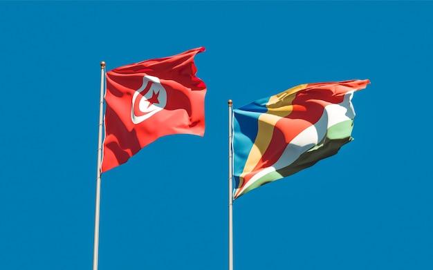 Drapeaux de la tunisie et des seychelles sur fond de ciel