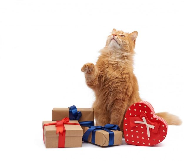 Drôle de chat au gingembre adulte assis au milieu de boîtes enveloppées dans du papier brun et attachées avec un ruban de soie
