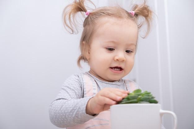 Drôle de petite fille touche soigneusement les succulentes en pot.