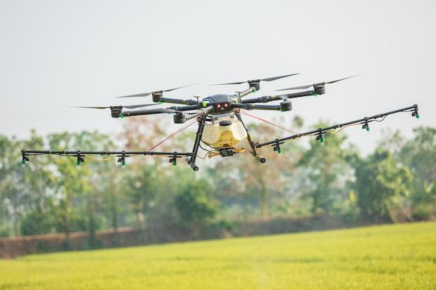 Drone agricole survolant la rizière pour pulvériser des produits chimiques ou des engrais.