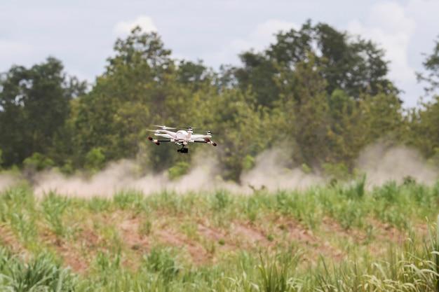 Drone de recherche survolant un jeune champ de canne à sucre