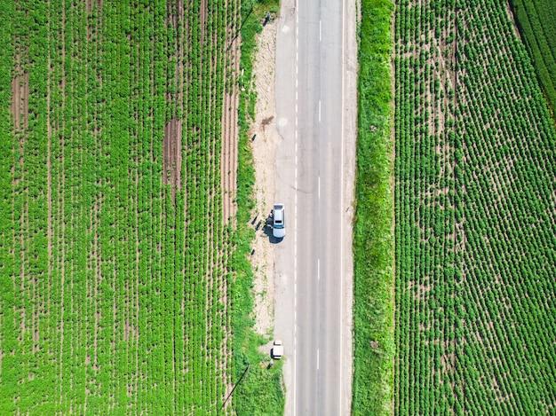 Drone vertical aérien d'une route dans les champs verts