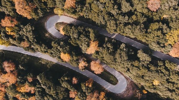 Drone / vue aérienne d'une route sinueuse au milieu de la forêt au coucher du soleil en automne