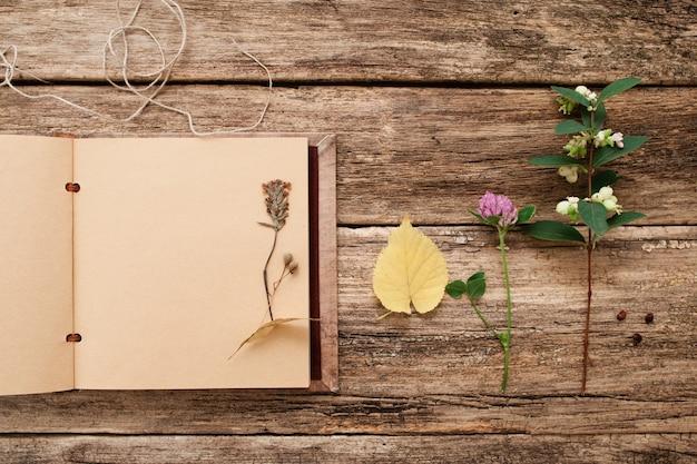 Dru up plantes dans scrapbook