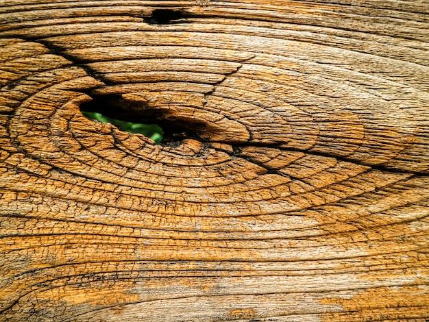 Dry ancienne de surface en bois extérieure a des dommages et ligne par tempurature