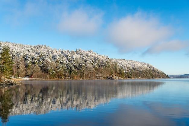 Du givre et de la neige sur les arbres, une eau calme avec des reflets.