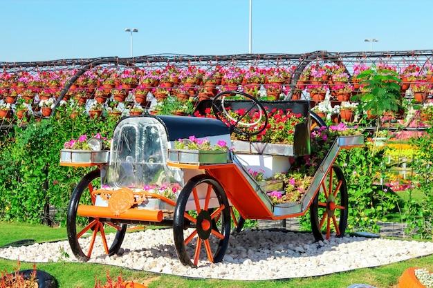 Dubai, émirats arabes unis - nov, 2013: voiture rétro faite avec des fleurs au miracle garden de dubaï. emirats arabes unis.