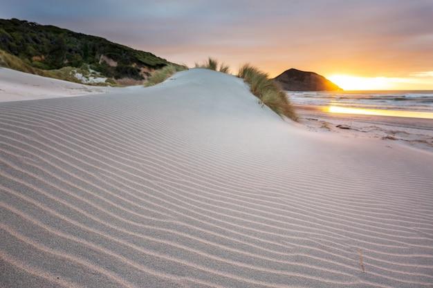 Dune de sable à la plage de l'océan pacifique, nouvelle-zélande