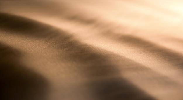 Dunes au vent