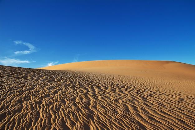 Dunes dans le désert du sahara au cœur de l'afrique