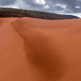 Dunes de sable dans un désert, coral pink sand dunes state park, utah, états-unis