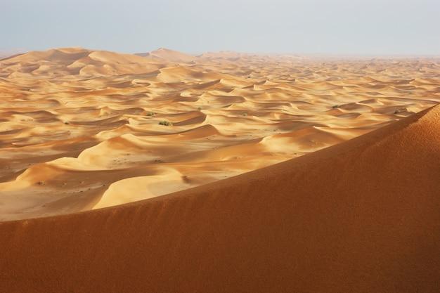 Dunes de sable du désert d'arabie au coucher du soleil