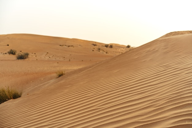 Dunes de sable jaune dans le désert de dubaï