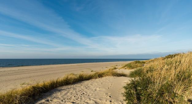 Dunes de sable sur la mer baltique dans le village de yantarny, région de kaliningrad.