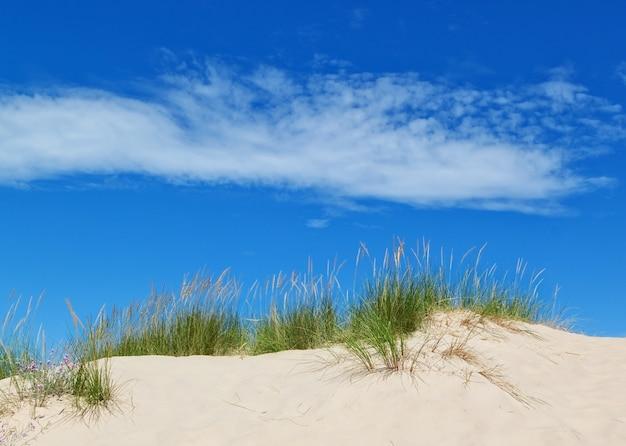 Dunes de sable sur le mur de ciel bleu. été.
