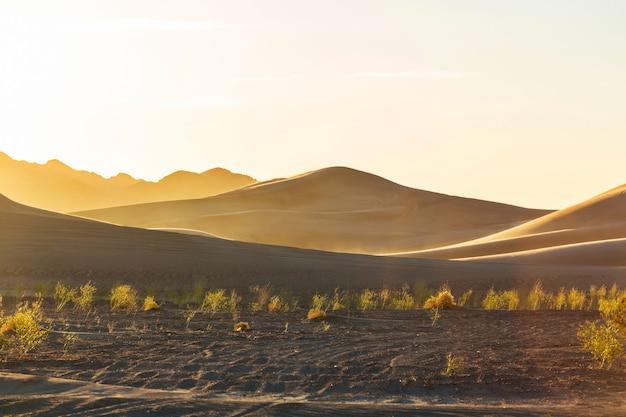 Dunes de sable pittoresques dans le désert