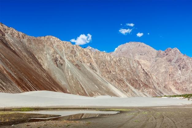 Dunes de sable. vallée de la nubra, ladakh, inde