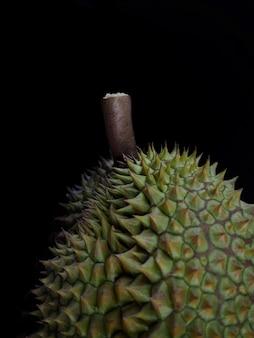 Durain mon thong, roi des fruits sur fond noir.