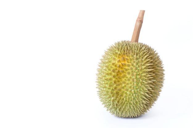 Durian comme roi des fruits en thaïlande. il a une forte odeur et une croûte couverte d'épines.