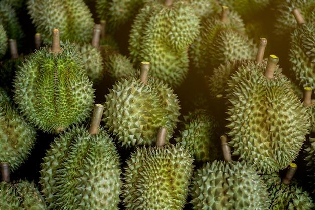 Durian avec des épines vertes
