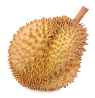 Durian isolé sur fond blanc.