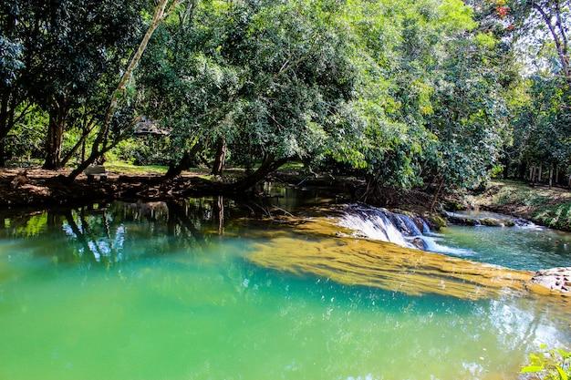 L'eau dans le ruisseau est un arbre vert et vert vif à kapo waterfall fores park.