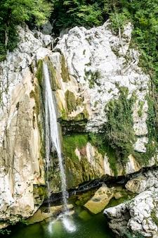 Eau Douce Du Ruisseau Dans Le Parc Photo Premium