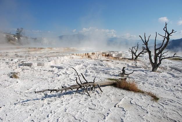 L'eau parc national de yellowstone