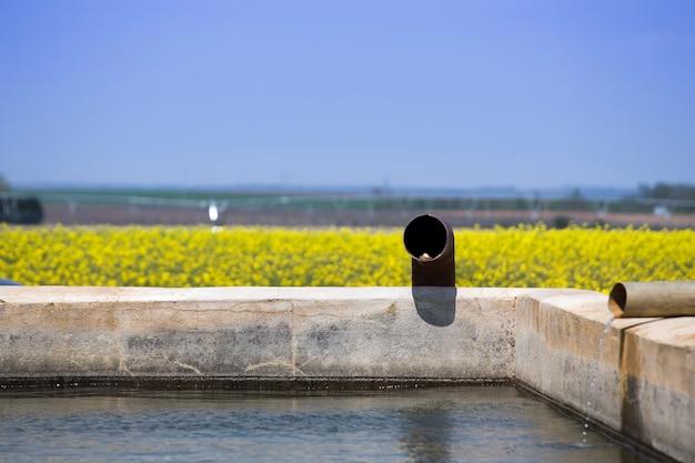 Eau pour l'irrigation