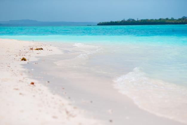 Eau turquoise idyllique parfaite sur une île exotique